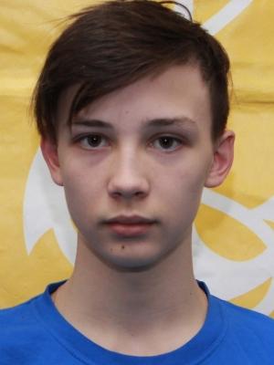 Vladimir Puide